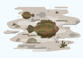 Ilustração da solha e do habitat vetor