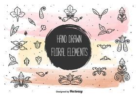 Elementos florais desenhados à mão vetor
