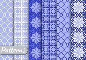 Blue Ornamet Pattern Set vetor