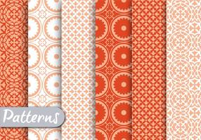 Orange Ornamet Pattern Set vetor