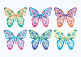 Coleção de borboleta de vetores