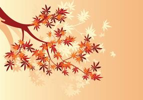 Planta de maple japonesa lisa e folhas de maple de outono
