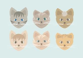 Gatos desenhados a mão vetor