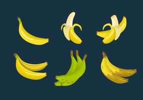 Coleção de vetores de plátano banana