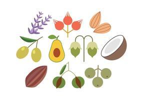Vetor de ícones planos de ervas grátis
