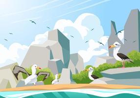 Pássaros de albatroz no vetor de praia rochosa