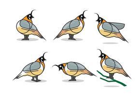 Ilustração plana do vetor de codorniz