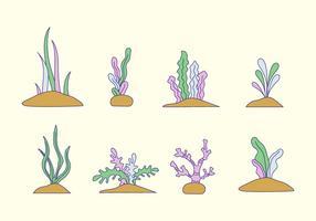 Vetor de algas marinhas