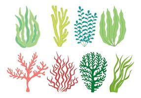 Conjunto de ícones do Weed do Mar vetor