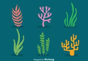 Vetor de erva e coral do mar