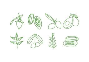 Conjunto de ícones de plantas ervas vetor
