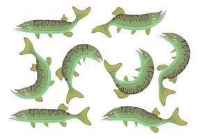 Ícones de peixe de Muskie vetor