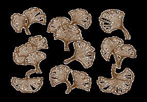 Folha de Ginkgo desenhada à mão vetor