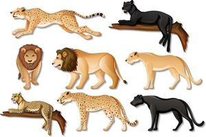 conjunto de animais selvagens africanos isolados em fundo branco