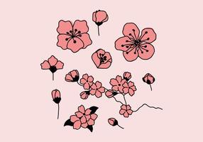 flores de ameixa rosa vetor