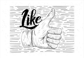 Ilustração de thumbs up do vetor desenhada à mão livre