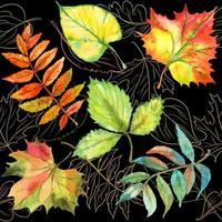 padrão sem emenda com folhas de outono. aquarela. vetor