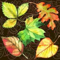 padrão sem emenda com folhas de outono vetor