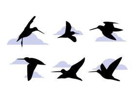Livros de pássaro Snipe exclusivos e excepcionais vetor