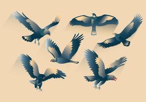 vetor buzzard