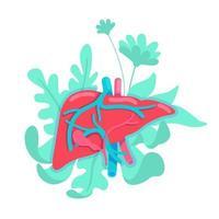 sistema anatômico do fígado vetor