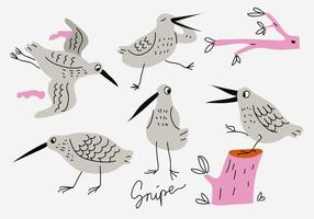 Snipe Funny Cartoon Hnad Desenho Ilustração vetorial vetor