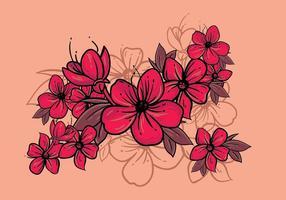 ilustração da flor de ameixa vetor