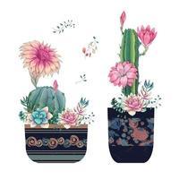 suculentas e flores em vasos aquarela desenhadas à mão vetor