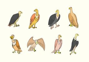vetor pássaro buzzard
