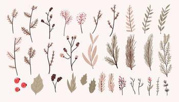conjunto de elementos de decoração de plantas de natal