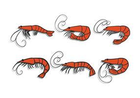 Conjunto de vetores de camarão