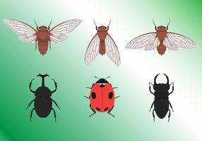 Conjunto de insetos tropicais vetor