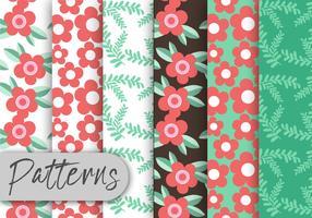 Conjunto de padrões florais