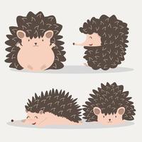 conjunto de animal ouriço fofo