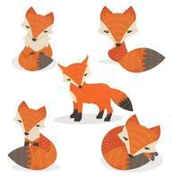 desenho de raposas fofas em diferentes poses vetor