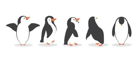 personagens de pinguins em diferentes poses definidas