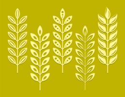 Orelhas de trigo Silhueta vetor