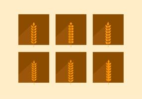 Orelhas planas de trigo castanho vetor