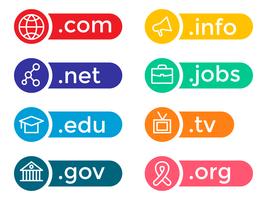 Vetor colorido do ícone do domínio