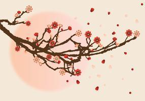 Projeto do vetor da flor da ameixa