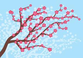 flor de ameixa na ilustração da primavera vetor