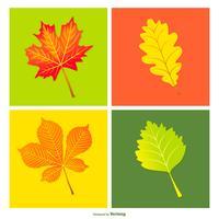 Coleção colorida de folhas de vetores