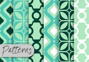 Conjunto de padrões de decoração de mint vetor