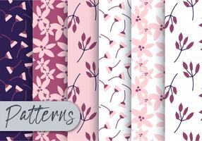 Conjunto de padrões de flora vetor