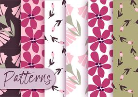 Conjunto colorido de padrões de flora vetor