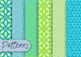 Conjunto de padrões de ornamento vetor