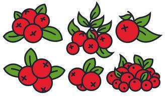 conjunto de ícones do vetor cranberry