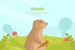 ilustração do gopher vetor
