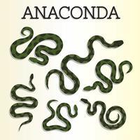 vetor de anaconda grátis