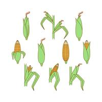 Vector de plantas de milho grátis
